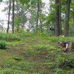 Tundmatu eesti sõduri haud